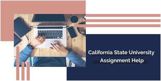 california state university