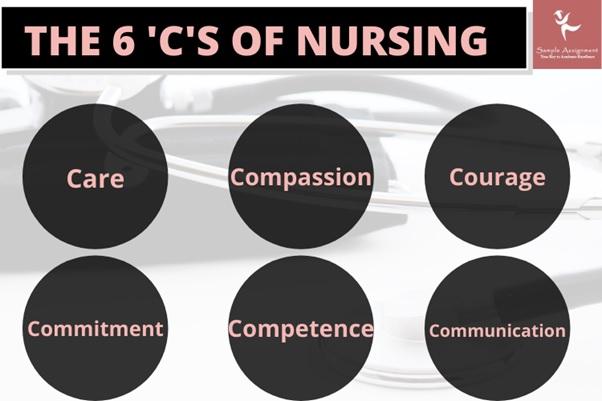 advanced nursing homework experts