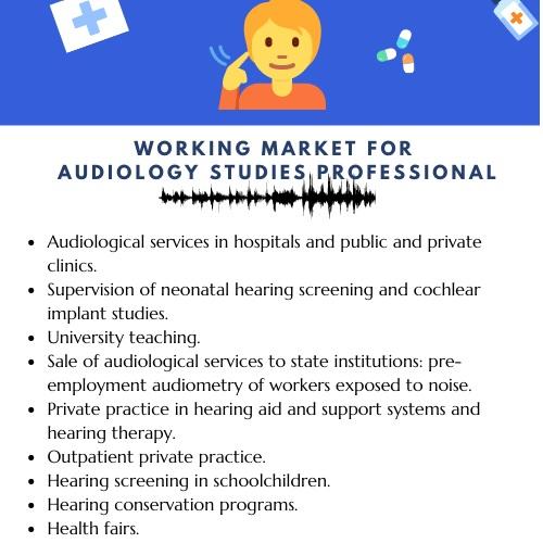 audiology studies academic assistance through online tutoring
