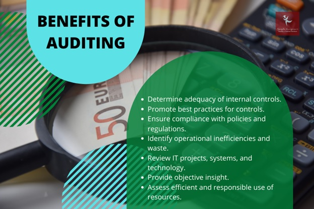 auditing assignment help Canada