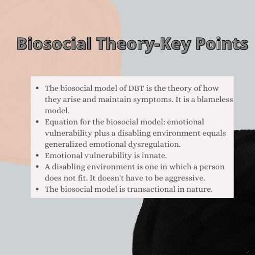 biosocial theory homework help