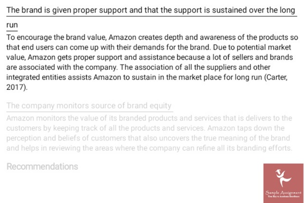 brand management assignment example