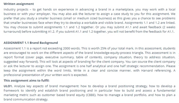 brand management assignment sample