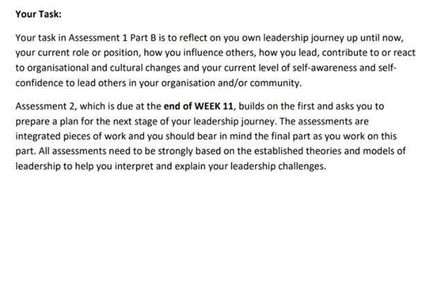 do my leadership assignment