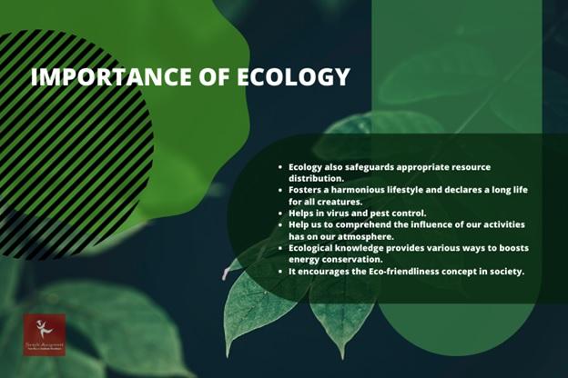 ecology homework help