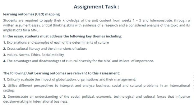 international business homework