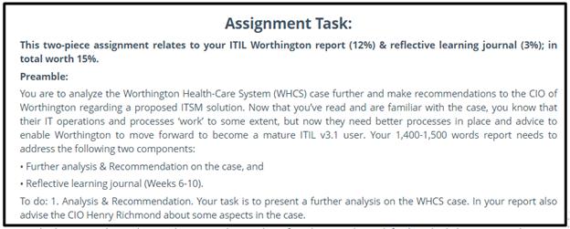 it management assignment sample