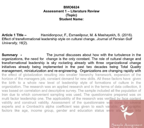 literature review assignment sample