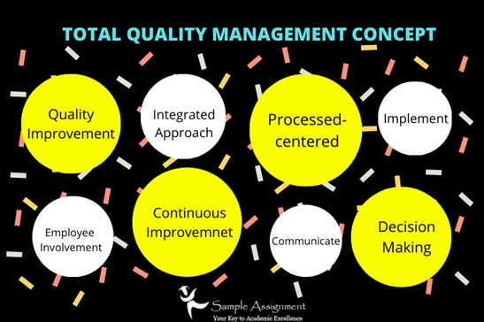 management assignment experts