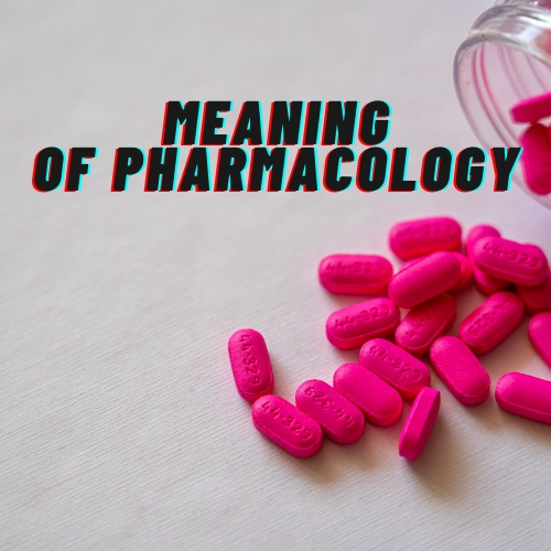 Pharmacology Assignment Help Canada