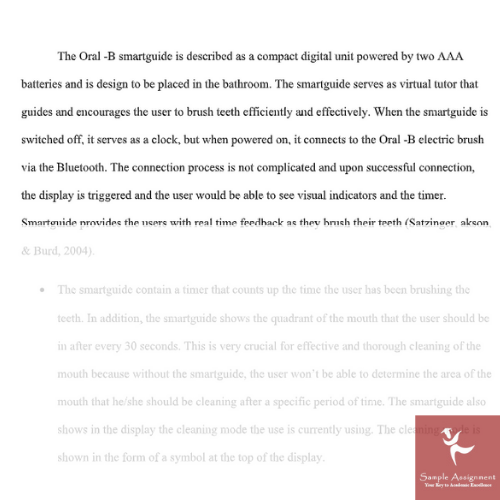 software engineering assignment example