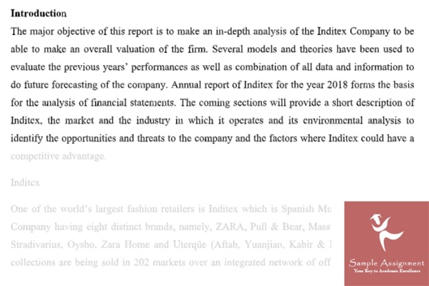 financial statement analysis assignment answer