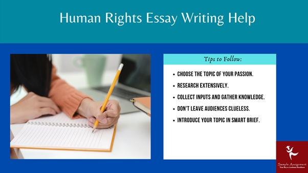 human rights essay writing help