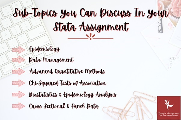 stata assignment