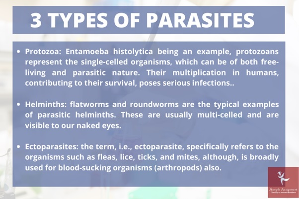 types of parasites