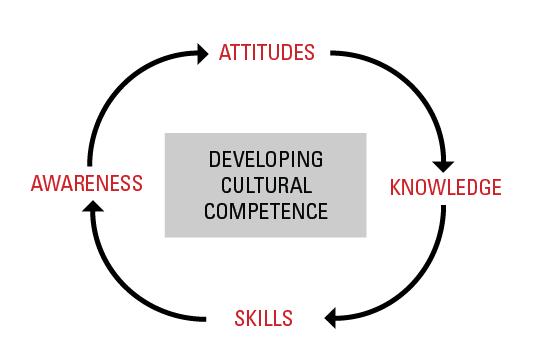 cultural diversity assessment