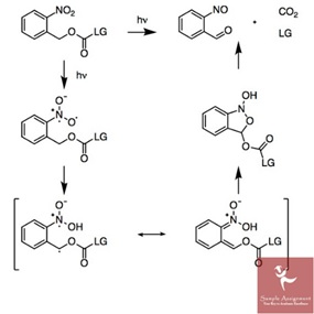 Online Organic Chemistry Assignment