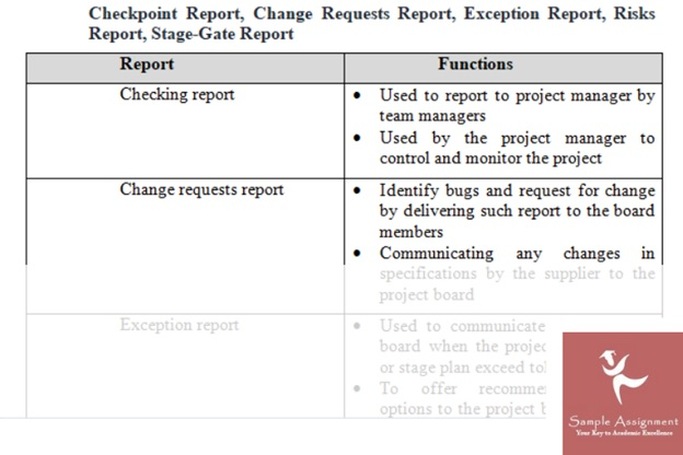 PPMP20010 executing and closing project assignment experts