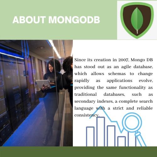 MongoDB Assignment Help
