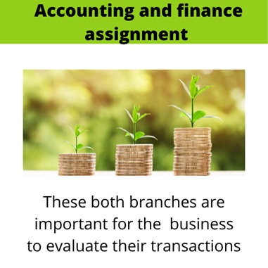 accounting and finance for business assignment