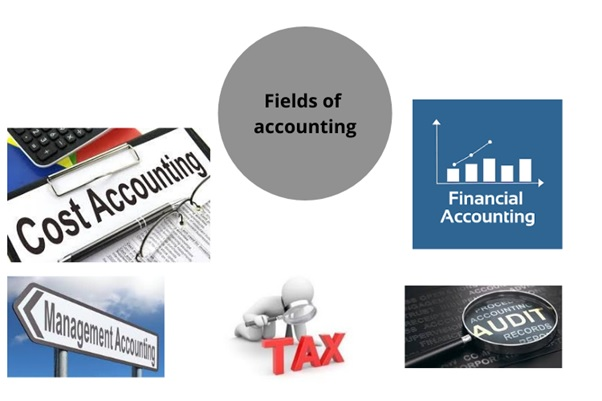 process of financial transactions assignment help