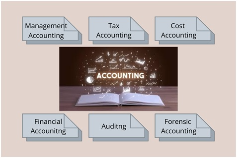 accounting assignment sample
