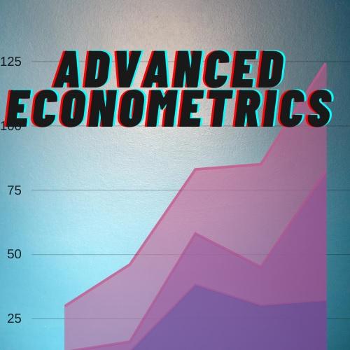 advanced econometrics assignment help
