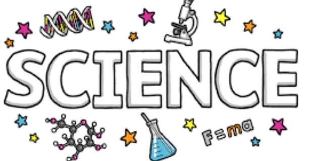 applied science assignment services
