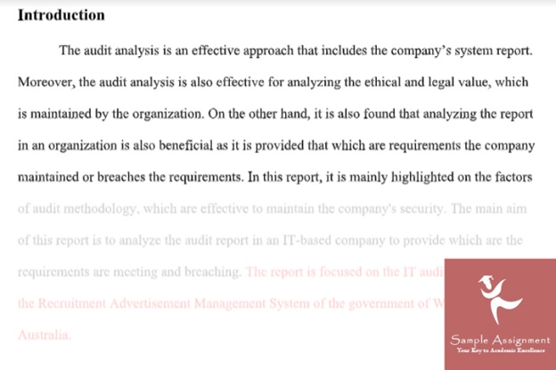 audit report assignment experts