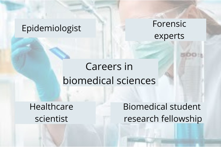 biomedical science assignment help