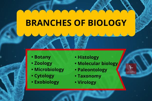 biologists assignment help