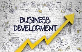 business development assignment help