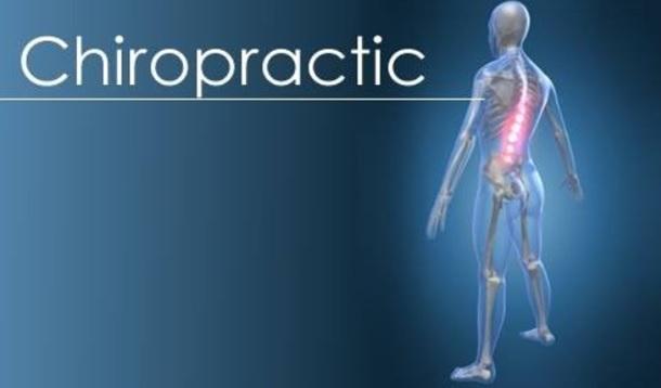 chiropractic science assignment help