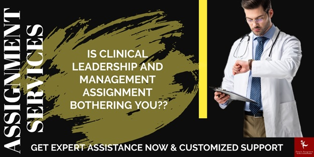 clinical leadership assignment help