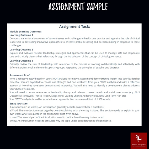 clinical leadership assignment sample