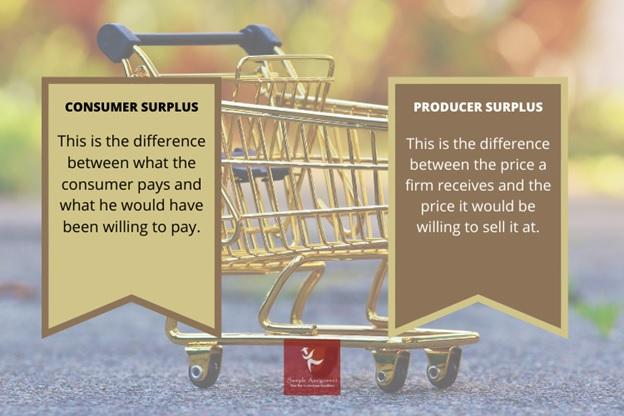 Consumer Surplus Assignment Help