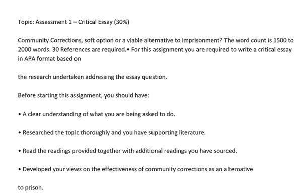 critical essay assignment