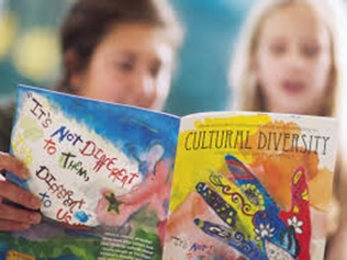 cultural diversity assignment online