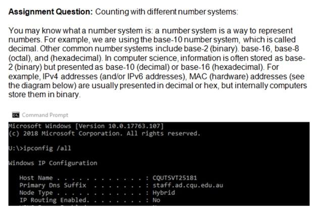 database assessment sample