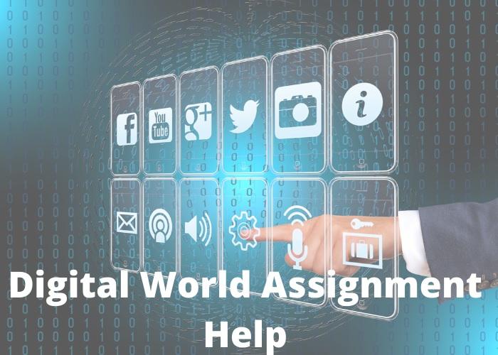 digital world assignment help