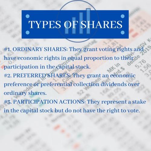 equity shares homework help