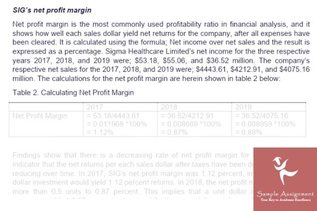 financial risk analysis assignment help