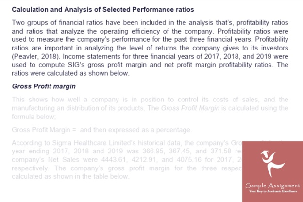 financial risk analysis assignment solution