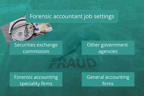Forensic Accounting Job