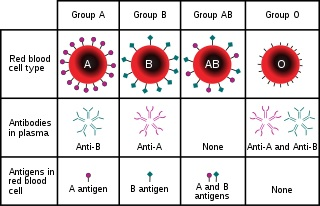 genetic mapping assignment-help