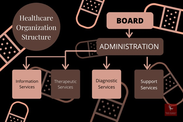 healthcare organization assignment