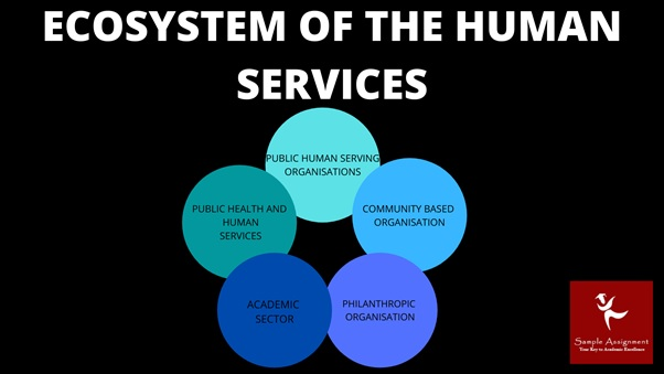 human services and interventions assignment help