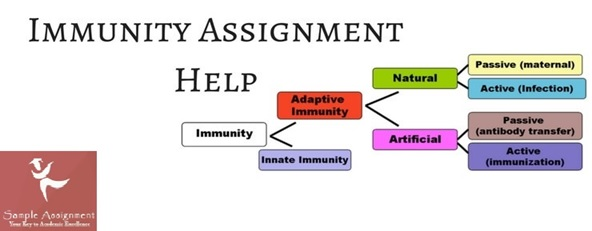 infection and immunity assignment help online