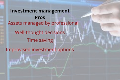 investment management assignment help