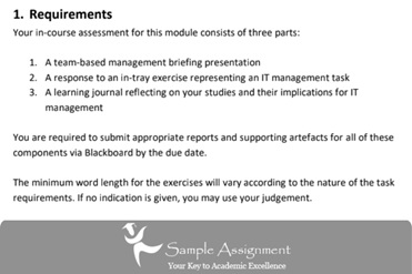 it management assignment solutions